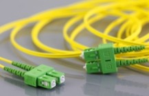 Optical patchcords, pigtails